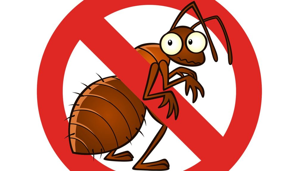 Find out How Our Bug Spray Actually Eliminates Bed Bugs