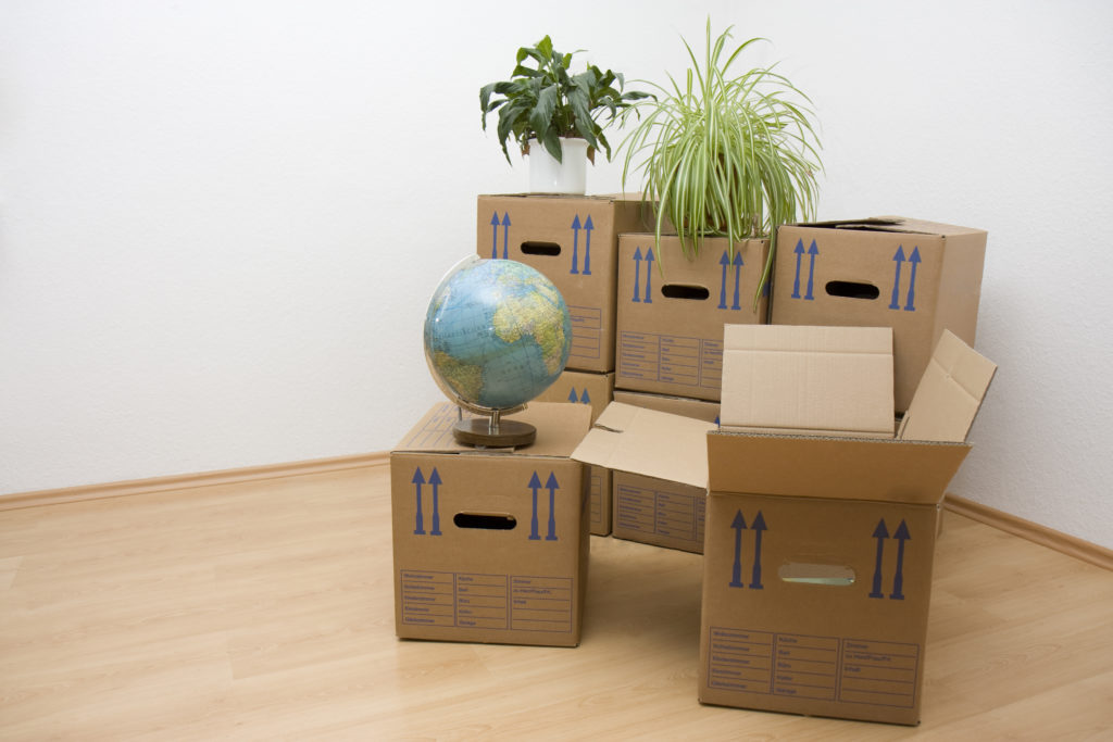 Movers and Packers - Choosing the Right One